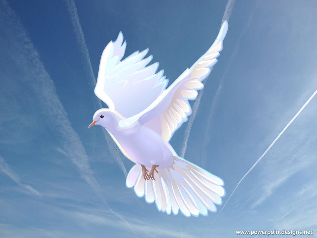 Afbeelding van duif, teken van de Heilige Geest, belangrijk voor de Pinkstergemeente.